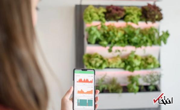 باغ هوشمندی که طبیعت را به خانه شما می آورد
