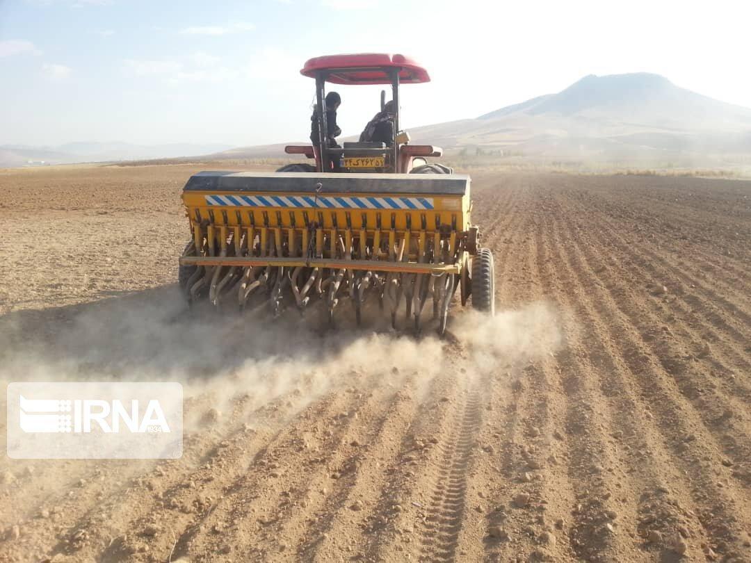 خبرنگاران 98 درصد اراضی کشاورزی کشت پاییزه هشترود مکانیزه است