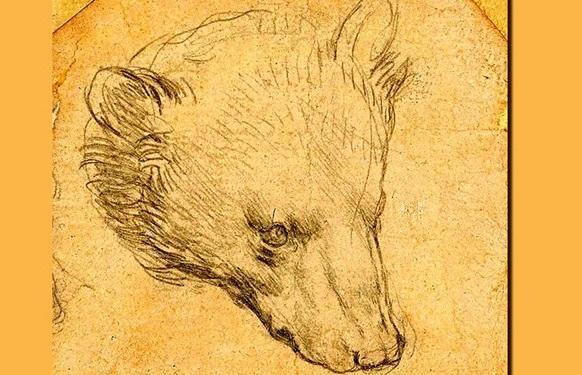 حراج برای سر خرس داوینچی به قیمت نجومی