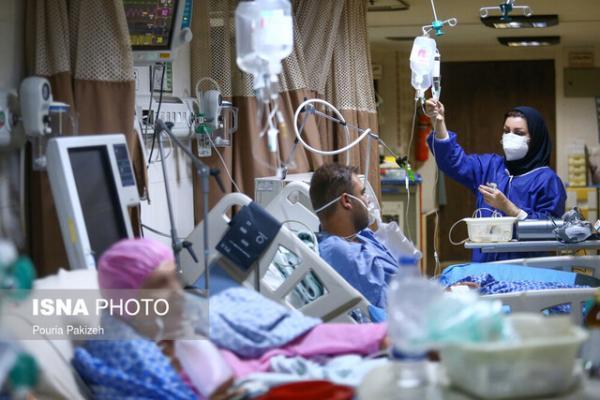 قربانیان کرونا هرمزگان در یک روز تک رقمی شد، شیوع قارچ سیاه صحت ندارد